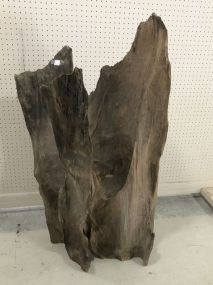 Large Cypress Stump