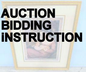 Auction Bidding Instruction